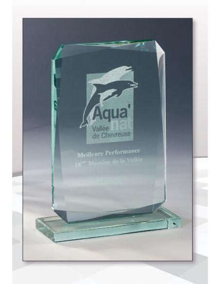 Trophée en verre format rectangulaire gravée de 17 à 22 cm