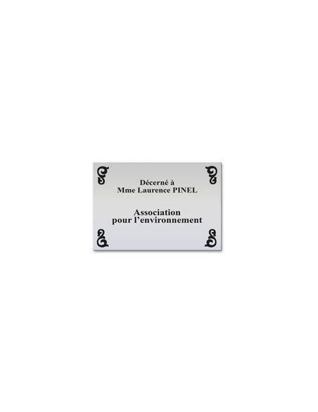Plaque professionnelle 20x30mm standard fond alu brossé ,écriture noire ép 1,6 mm